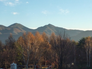 この日は秋晴れ。雪はまだです。見事な黄葉を、ホテルの窓から。