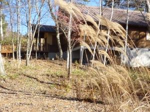 冬が近いらいてうの家
